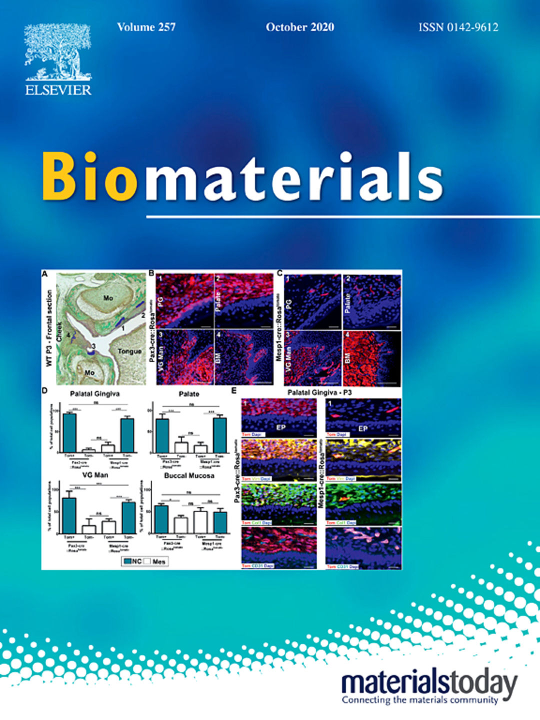 Biomaterials, Vol. 257, October 2020. Copyright: Elsevier