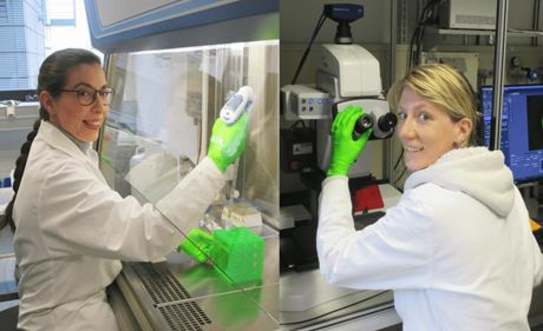 From left to right: Dr. Laura Zorzetto, Dr. Cécile Bidan from the Biomaterials Department at the Max Planck Institute of Colloids and Interfaces in the laboratory. Copyright: Max Planck Institute of Colloids and Interfaces
