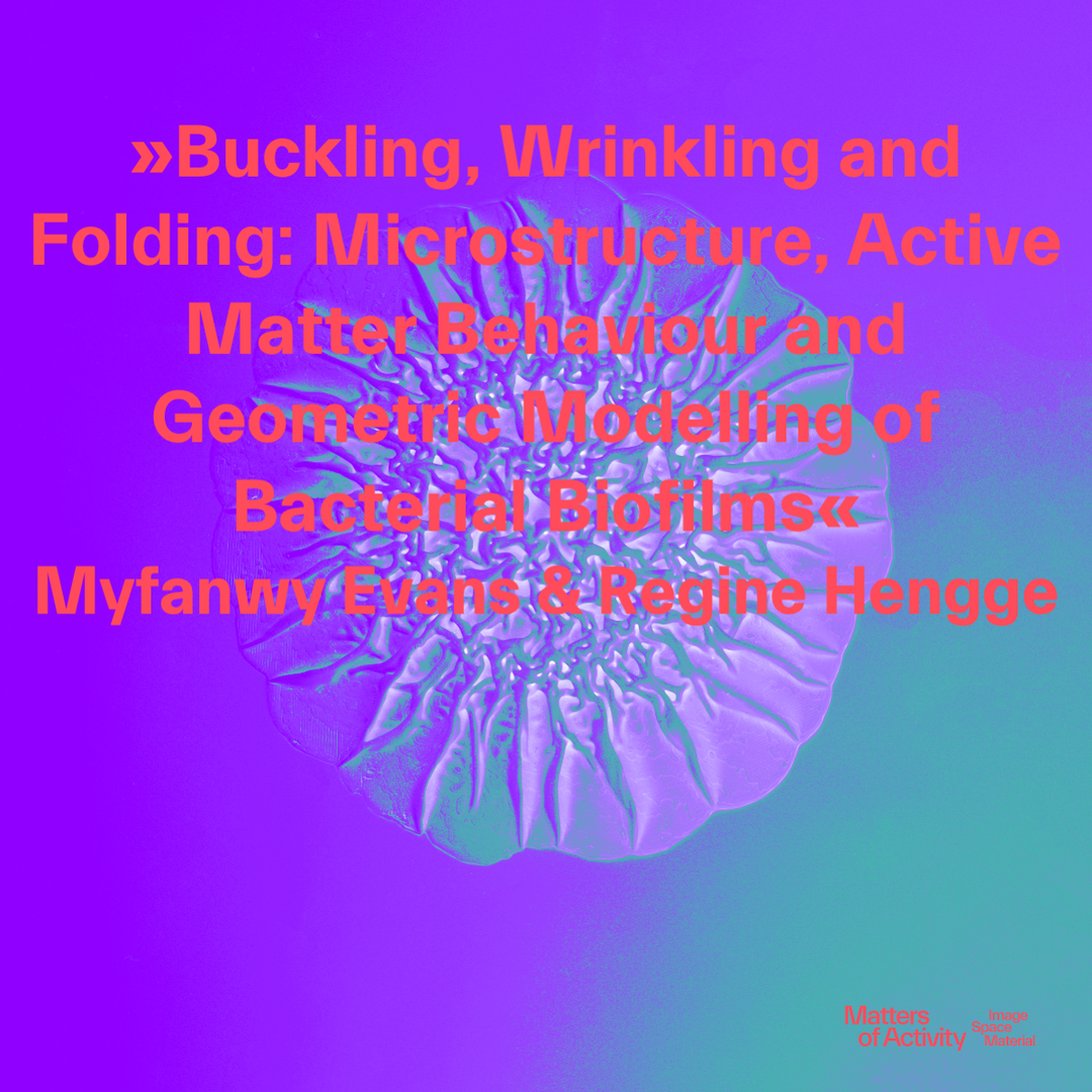 Biofilm. Copyright: Matters of Activity